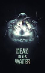 Suda Ölüm Dead in the Water izle